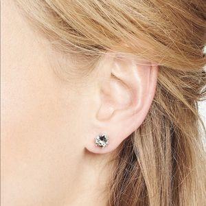 Smokey Sparkle Stud Earring by Stella & Dot! NWT